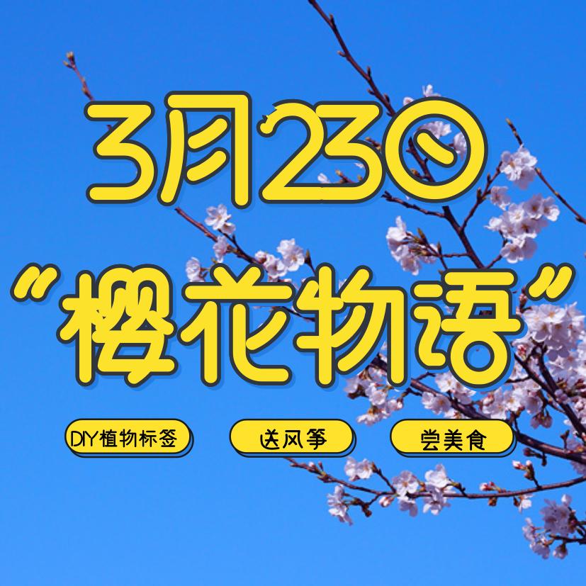 3.23共赏樱花物语!